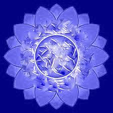 Acció Blau loto_rev